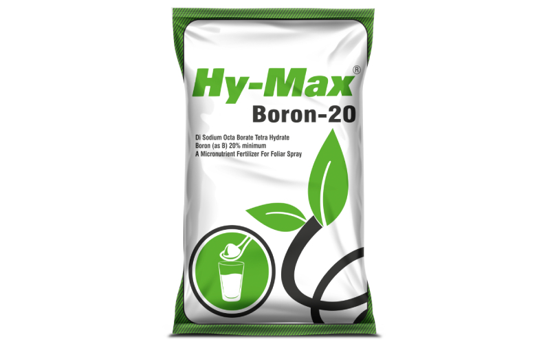 Micronutrient Fertilizer In Vadodara